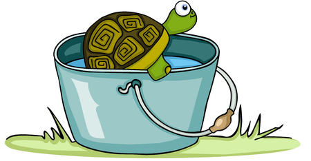 Turtle in bucket with water