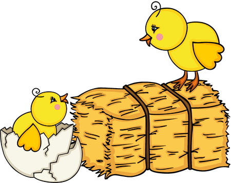 Little chicks with bale of hay