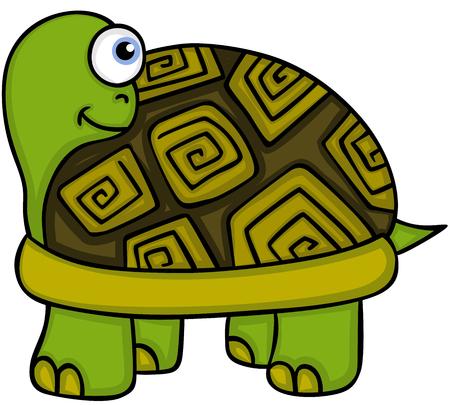 Cute turtle peeking