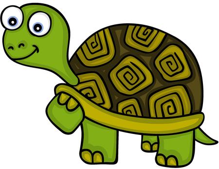 Cute little turtle illustration. Illustration