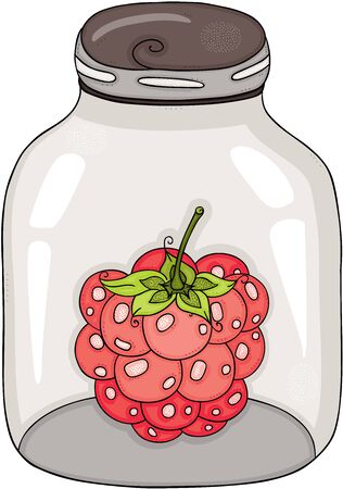 Red raspberry closed on transparent glass jar 일러스트