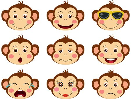 Faces of monkeys with feature a different expressions