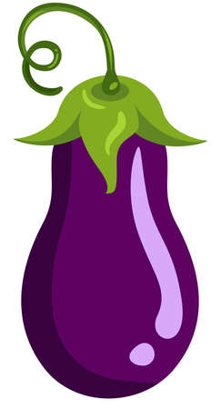 Scalable vectorial representing a fresh eggplant whole, element for design, illustration isolated on white background.