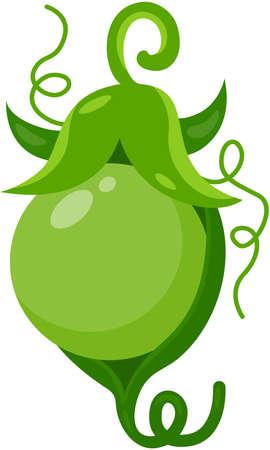 Fresh pea in a small pod Иллюстрация