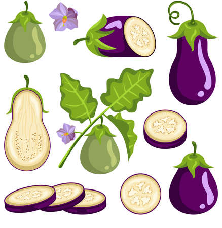 Fun package of eggplant with set digital elements