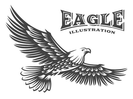 Eagle vector illustration, emblem on white background Illustration