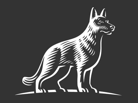 Shepherd dog, vector illustration