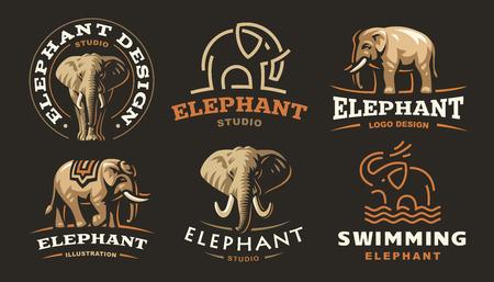 Metta il logo dell'elefante - vector l'illustrazione, progettazione dell'emblema su fondo scuro