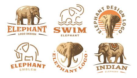 Colored set elephant logo illustration, emblem design