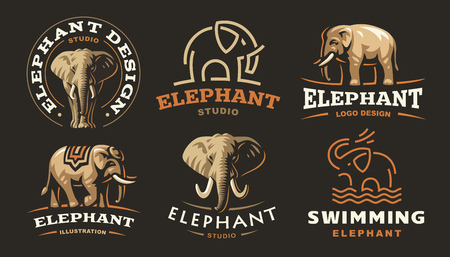 Set elephant logo - vector illustration, emblem design on dark background.