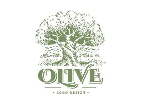 Olive label, emblem design Olive tree vector illustrations Ilustração