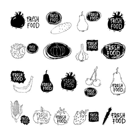 Fresh, Healthy, Farmers food. Vegetables. Fresh corn cob, tomato, garlic, pumpkin, beetroot, cabbage, cauliflower. Ink brush hand lettering. Sketch style. Hand drawn cartoon vector illustration.