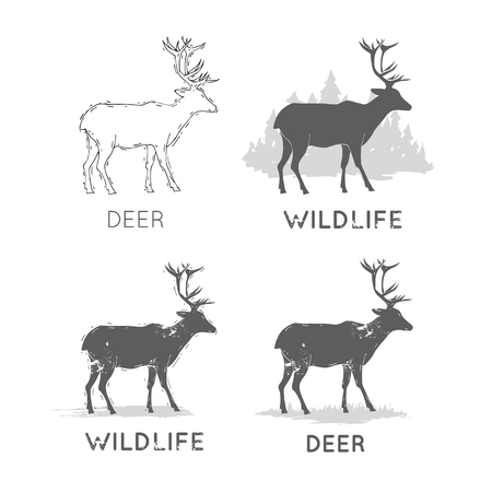 Deer Silhouettes Wildlife hand draw. Hunting, travel, wild nature, survival. Retro, vintage. Stock Vector - 76092347