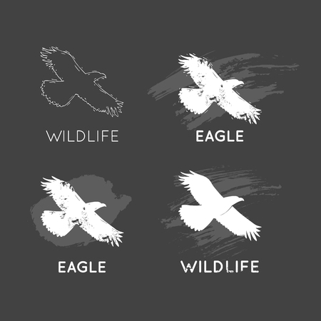 natural forces: Eagle Silhouettes Wildlife hand draw. Hunting, travel, wild nature, survival. Retro, vintage.