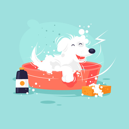 Dog washing flat design illustration.