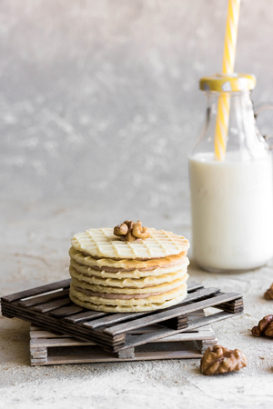 Chocolate-nut waffle cookies with milk on a light background