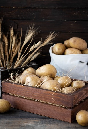 Organic raw potatoes in a wooden box in the straw on a dark background
