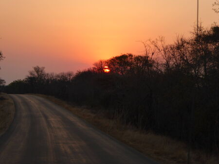 game drive: Beautiful sunset on game drive in South Africa Stock Photo