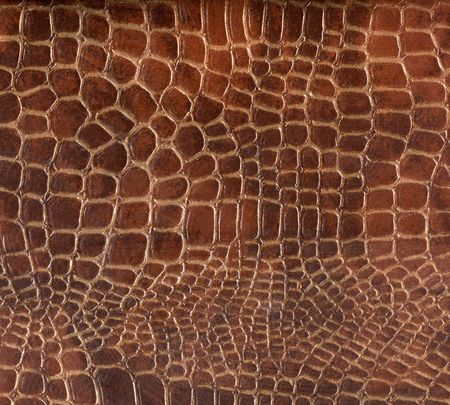 Croco Leather Texture photo
