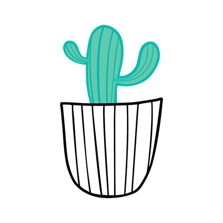 Green cactus in a black and white pot.