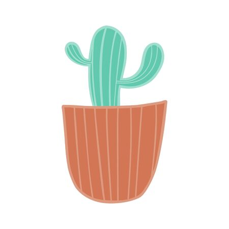 Green cactus in a clay pot.