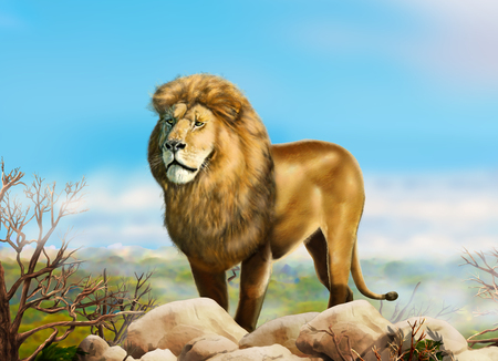 Lion Big. African lion in a wild nature. landscape Africa. Painting. Realistic Illustration Stock Photo