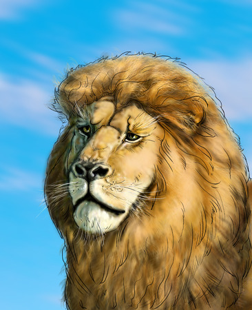 Portrait of a big African lion on blue sky background, Africa. Hand Drawn. Realistic Illustration