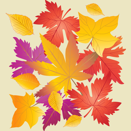 Autumn leaves background. Maple leaf pattern. Autumn Leaf pattern. Fall leaf. Fall leaves. Fall season. Leaf icon. Maple leaves texture. Colorful leafs, Leafe fly, leaf silhouette, Vector illustration