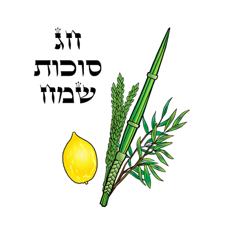 Happy Sukkot background. Hebrew translate: Happy Sukkot Holiday. Jewish traditional four species lulav, etrog for Jewish Holiday Sukkot. Vector Jewish new year. Autumn Festival