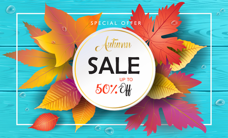Autumn sale flyer template with bright fall leaves frame. Foliage Poster Thanksgiving card, label, holiday offer banner design. Bright turquoise wood background.