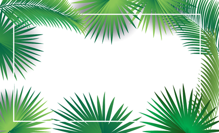 Sukkot palm leaves frame sukkah green tropical leafs decoration