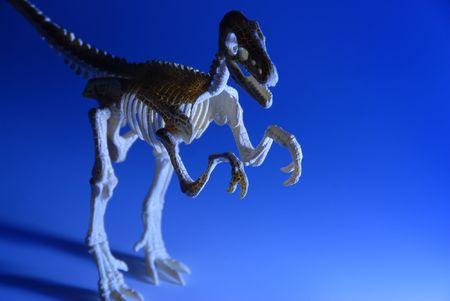 darwinism: dinosaur Stock Photo