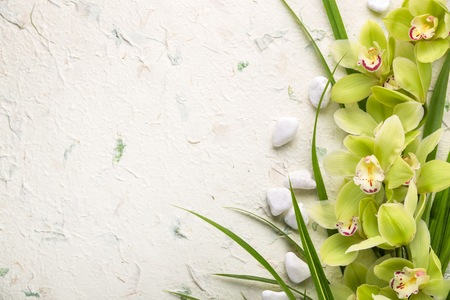 blooming orchid and pebbles Stok Fotoğraf