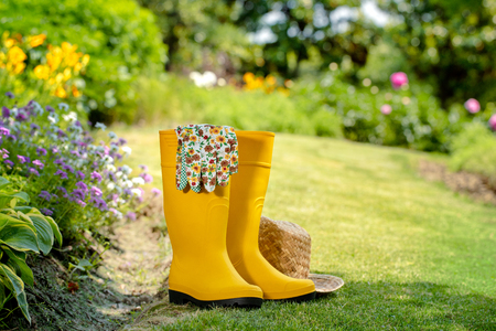 Gardening tools in garden Stok Fotoğraf