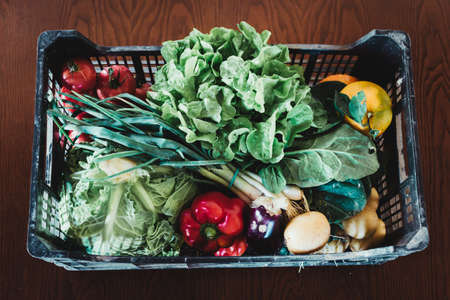 Big Basket with different Fresh Farm Vegetables over rustic table. Organic and healthy food.