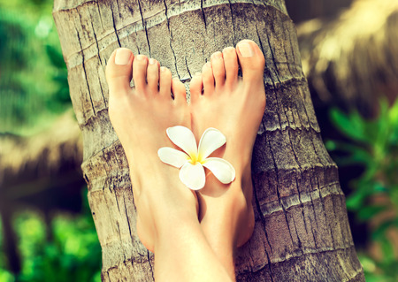 Tanned, well-groomed woman's feet with flower of frangipani in between, is laying on palm trunk.Pedicure, feet care and Spa. Simbolik image of comfortable rest in vacation. Stock Photo