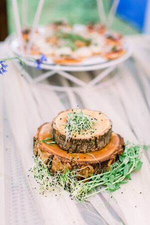 Fresh micro greens on wooden stands plates on the table. Catering service. Restaurant table with food at event.