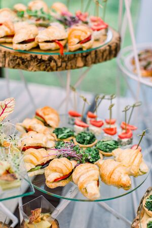 Catering buffet and rustic decor, outdoor wedding party with healthy food snacks