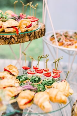 Beautifully decorated catering banquet table with different food snacks and appetizers on corporate party event or wedding celebration outdoors