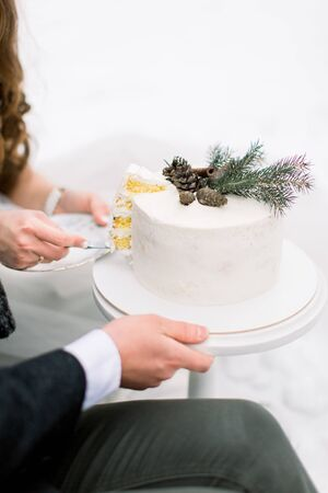 Cropped image of hands of bride and groom cutting the white winter wedding cake in the front of snowy forest outdoors. Stok Fotoğraf