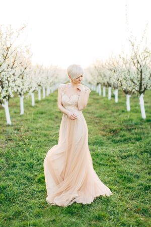 Portrait of young pretty blond woman in wedding elegant dress in the flowered garden in the spring time. Fruit trees blossoms, lines of trees on the background Archivio Fotografico