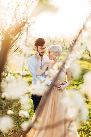 Wedding couple in love stands near blooming plum tree in the garden in sunny spring day, enjoying romantic date and walk during blossom season. Couple in blossoming garden Stockfoto
