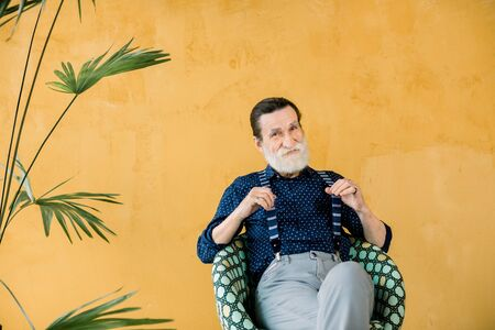 Portrait of handsome confident stylish elderly bearded man wearing dark blue shirt and gray pants, pulling away his suspenders, sitting on the chair on the yellow background with palm tree