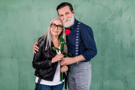 Elegant senior couple dressed in stylish trendy clothes and holding a Valentines Day red rose, standing embracing each other on isolated green wall background
