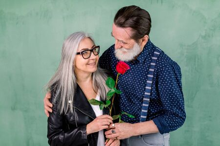 Romantic date, senior couple with a red rose in love. Senior handsome bearded man offering a rose to his partner, charming gray haired lady, standing together in front of green wall