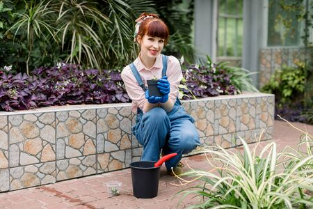Attractive gardener woman in jeans overalls and rubber gloves, planting flowers and succulents in greenhouse, holding pot with soil in hands. Gardening and transplanting concept