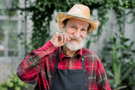 Portrait of handsome bearded cheerful elderly male gardener in straw hat, checkered shirt and apron standing indoors in hothouse with green plantings and twisting the his mustache