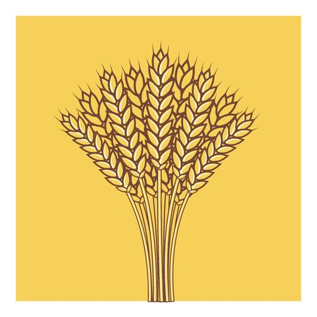 Wheat ears, Barley or Rye vector flat icon ,Shavuot consept