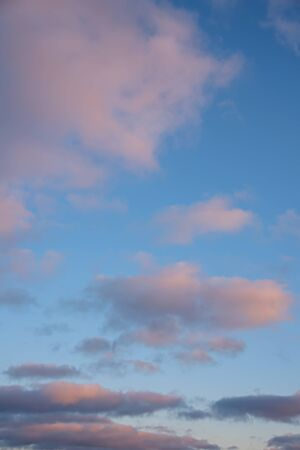 Pink vanilla clouds on a blue sunset sky.