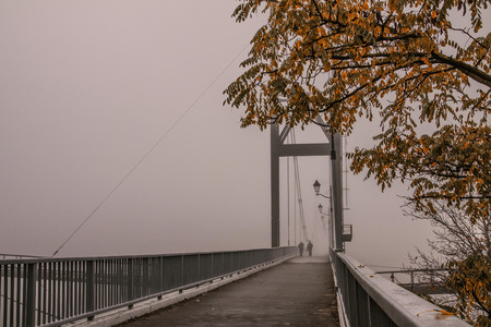 bridge in the fog and  tree with yellow leafs